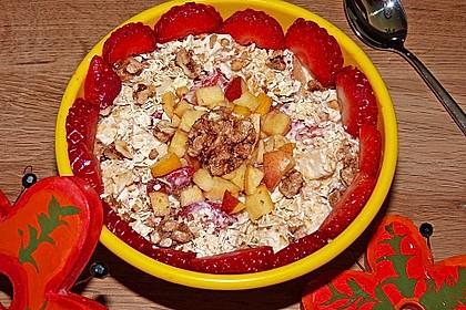 Erdbeer - Apfel - Nuss - Müsli 3