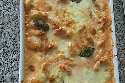Gnocchi aus dem Ofen in Paprika - Tomaten - Sauce 51