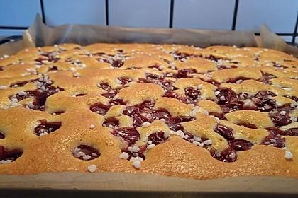 Kirsch - Schmand - Kuchen 16