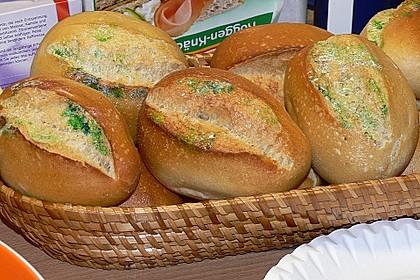 Schimmeliges Brot 13