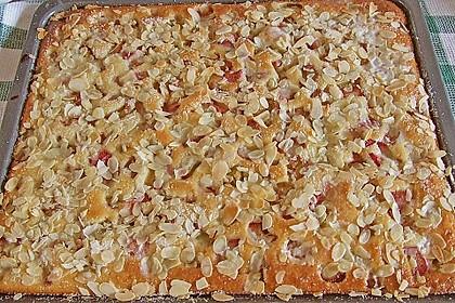 Rhabarber - Buttermilchkuchen 16