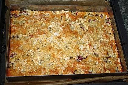 Rhabarber - Buttermilchkuchen 75