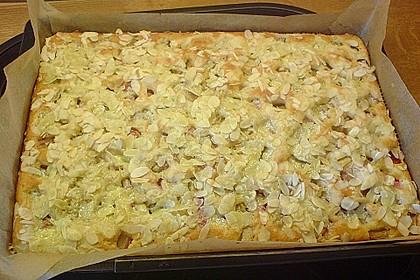 Rhabarber - Buttermilchkuchen 64