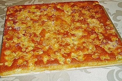 Rhabarber - Buttermilchkuchen 57