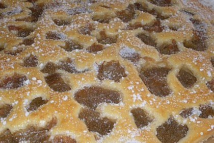 Rhabarber - Buttermilchkuchen 104