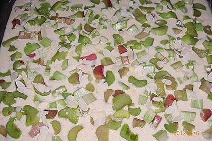 Rhabarber - Buttermilchkuchen 114