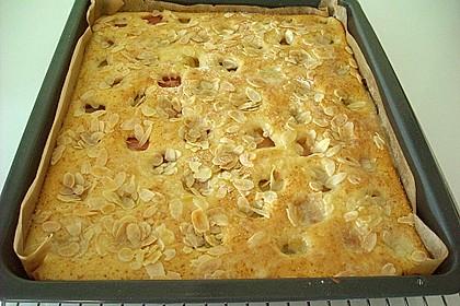 Rhabarber - Buttermilchkuchen 48