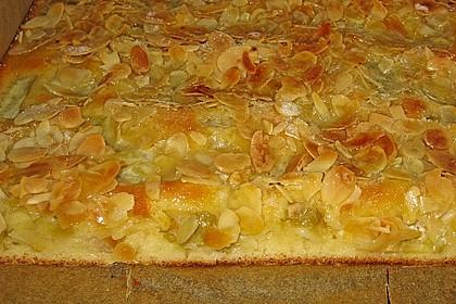 Rhabarber - Buttermilchkuchen 13