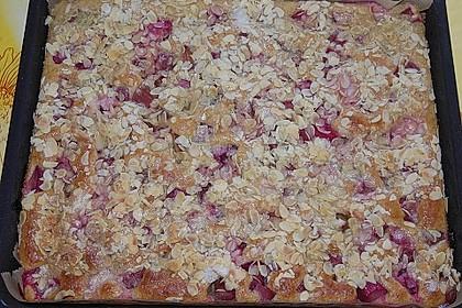 Rhabarber - Buttermilchkuchen 34