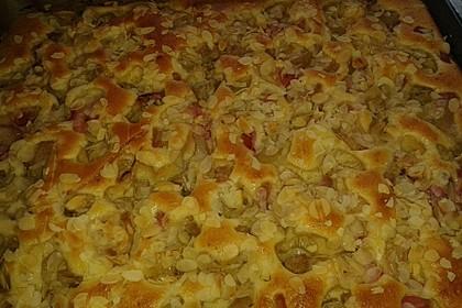 Rhabarber - Buttermilchkuchen 106