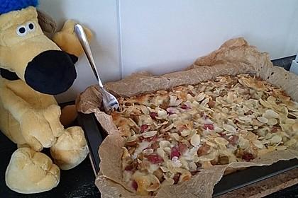 Rhabarber - Buttermilchkuchen 2