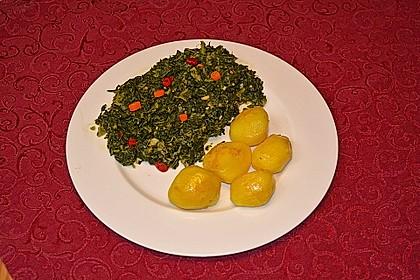 Grünkohl crunchy 6