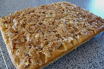 Apfel - Mandel - Kuchen mit Eierlikör 15