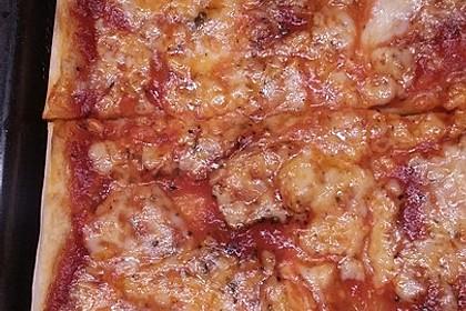 Pizza Margherita 46