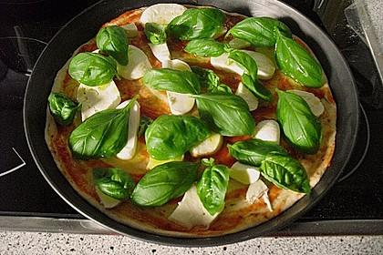 Pizza Margherita 20