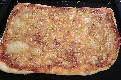 Pizza Margherita 41