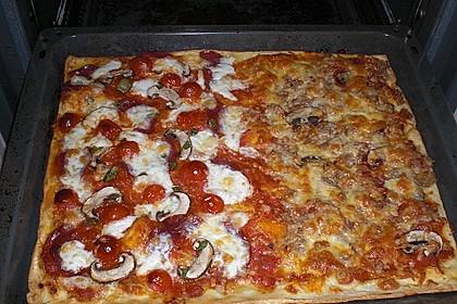Pizza Margherita 29