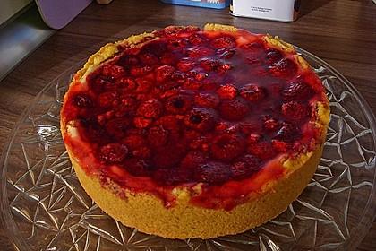 Fruchtiger Beeren - Vanille - Kuchen 9