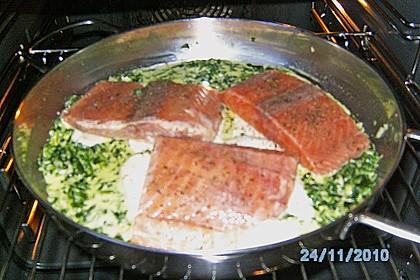 Lachsfilet auf Spinat und Mozzarella 3
