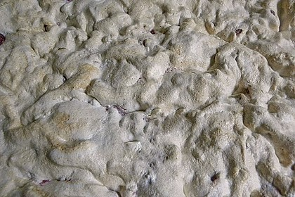 Ribiselkuchen (Johannisbeeren) 69