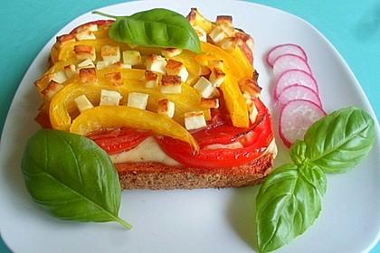 Sandwich - Pizza