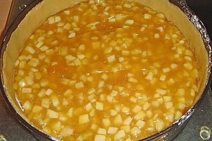 Apfel - Schmand - Torte 47