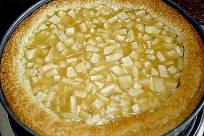Apfel - Schmand - Torte 40