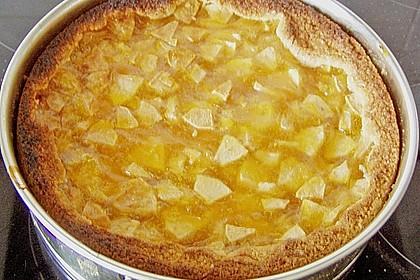 Apfel - Schmand - Torte 42