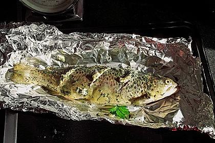 Lachsforelle aus dem Ofen 3