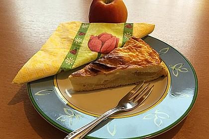 Apfelkuchen mit Rahmguss 5
