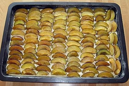Zwetschgenkuchen 107