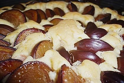 Zwetschgenkuchen 129