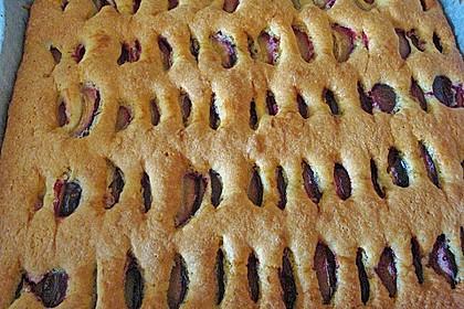 Zwetschgenkuchen 112