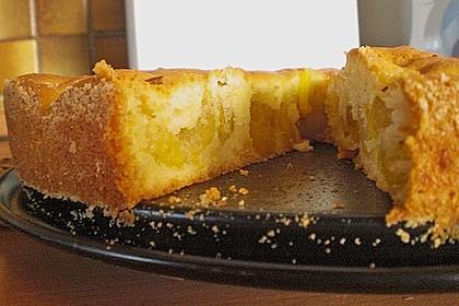 Zwetschgenkuchen 91