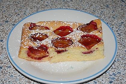 Zwetschgenkuchen 17