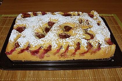 Zwetschgenkuchen 13