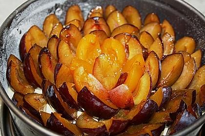 Zwetschgenkuchen 127