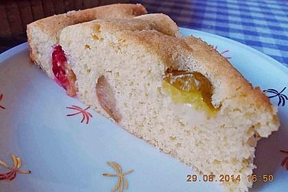 Zwetschgenkuchen 47
