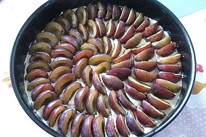 Zwetschgenkuchen 27