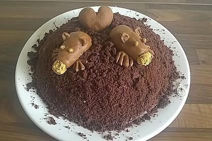 Maulwurfkuchen 31