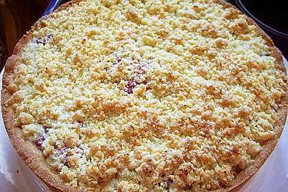 Kirsch-Himbeer-Kuchen mit Kokosstreuseln 29