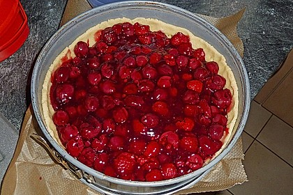 Kirsch-Himbeer-Kuchen mit Kokosstreuseln 61