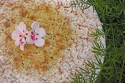 Kirsch-Himbeer-Kuchen mit Kokosstreuseln 15