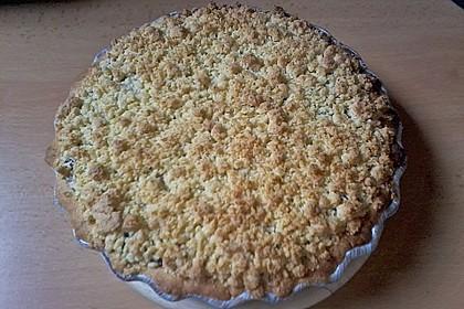 Kirsch-Himbeer-Kuchen mit Kokosstreuseln 56
