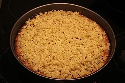Kirsch-Himbeer-Kuchen mit Kokosstreuseln 39