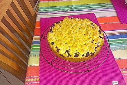 Kirsch-Himbeer-Kuchen mit Kokosstreuseln 51