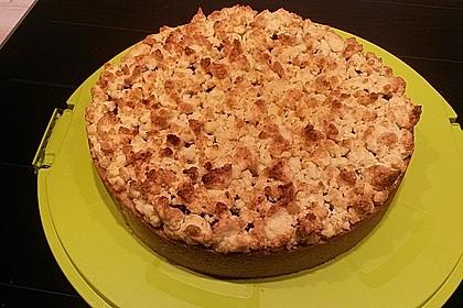 Kirsch-Himbeer-Kuchen mit Kokosstreuseln 47