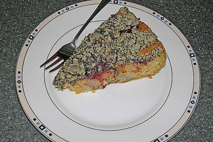 Apfel - Birnen - Kuchen 48