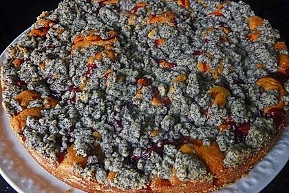 Apfel - Birnen - Kuchen 49