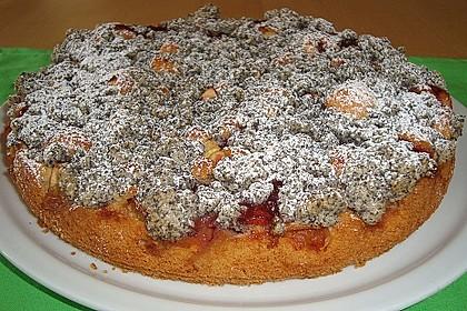 Apfel - Birnen - Kuchen 34